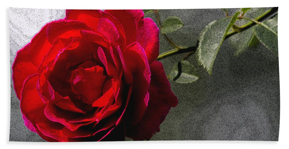 Photoshop Bath Sheet featuring the photograph Red Paris Rose by Jenny Gandert