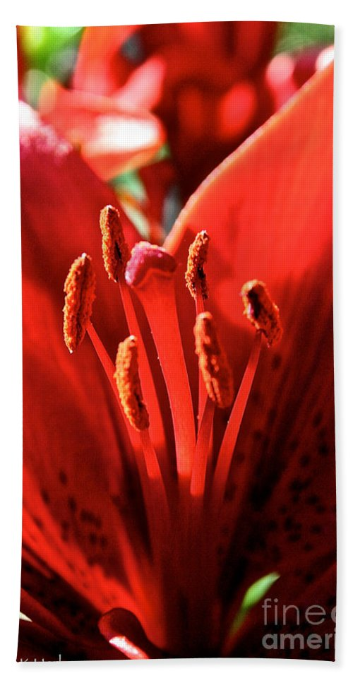 Plant Bath Sheet featuring the photograph Red Rules by Susan Herber