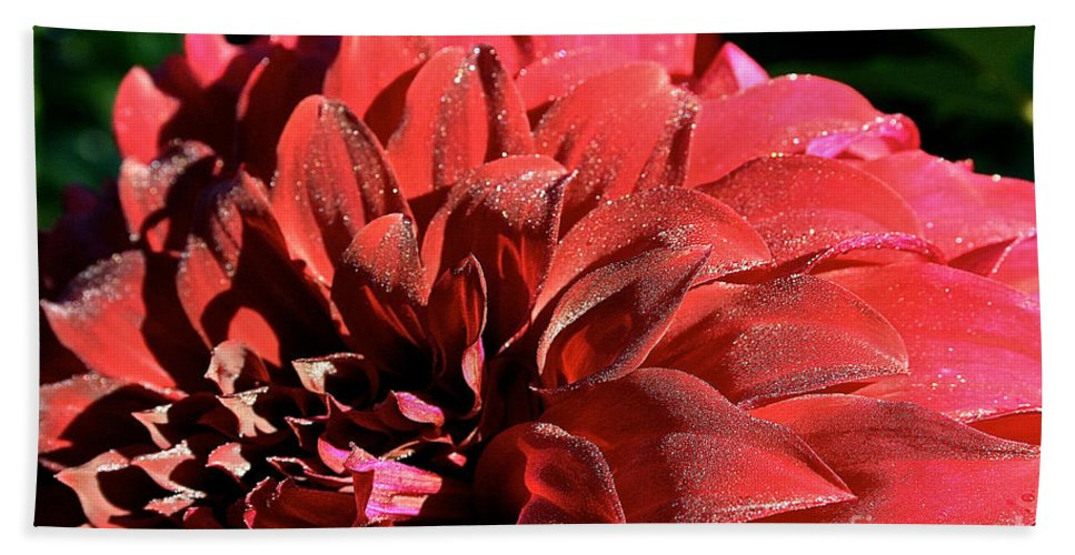 Outdoors Bath Sheet featuring the photograph Red Rush by Susan Herber