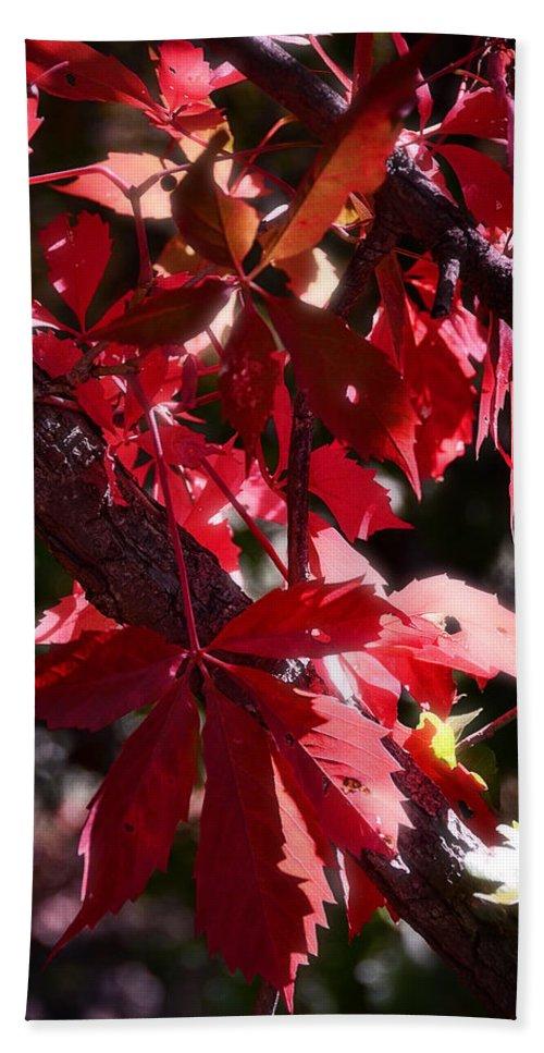 Red Bath Sheet featuring the photograph RED by Saija Lehtonen