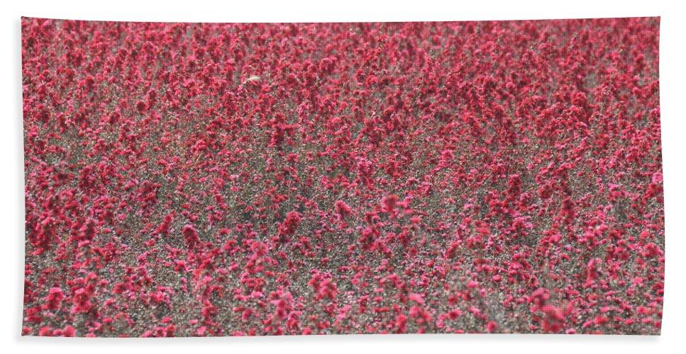 California Bath Sheet featuring the photograph Red Sea by Rich Bodane