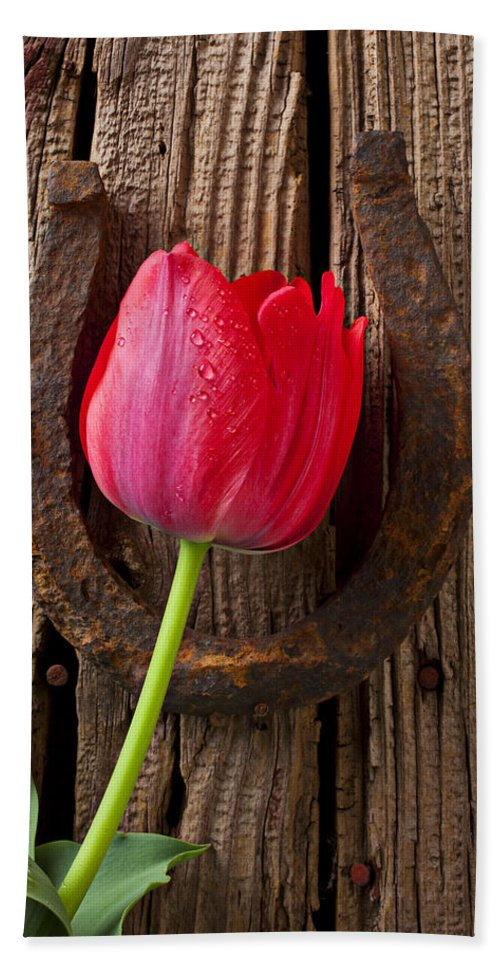 Red Bath Sheet featuring the photograph Red Tulip And Horseshoe by Garry Gay