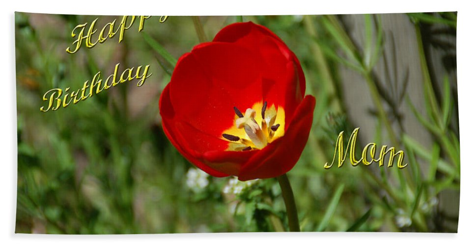 Tulip Hand Towel featuring the photograph Red Tulip Birthday by Aimee L Maher ALM GALLERY
