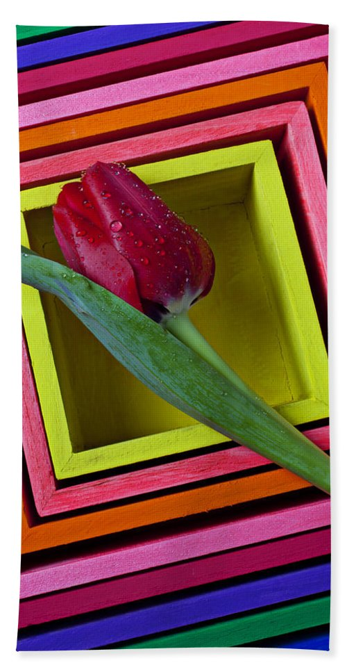 Red Bath Sheet featuring the photograph Red Tulip In Box by Garry Gay
