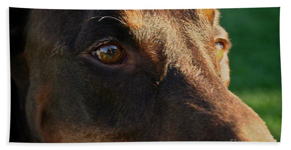 Mammal Bath Sheet featuring the photograph Redman by Susan Herber