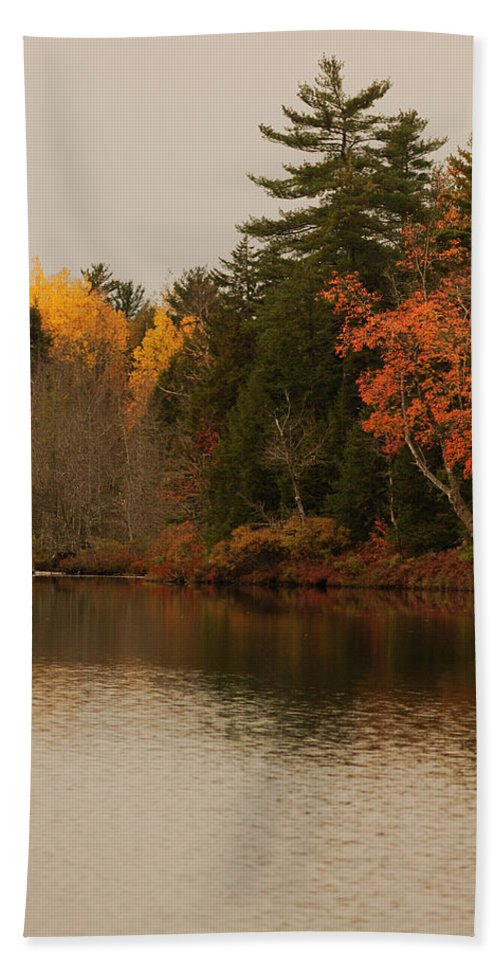 Nature Bath Sheet featuring the photograph Reflecting On Autumn by Susan Capuano