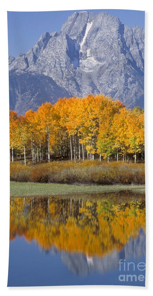 Bronstein Hand Towel featuring the photograph Reflection At Oxbow Bend by Sandra Bronstein