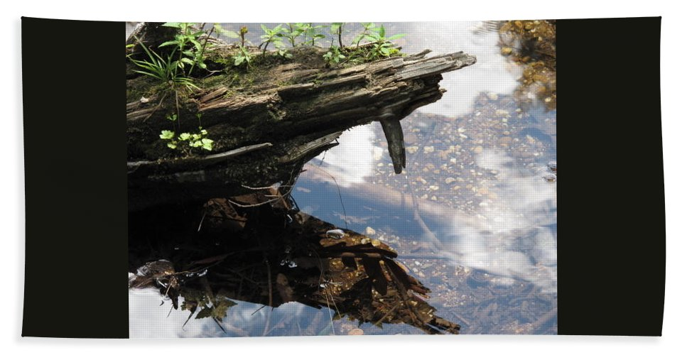 Wood Hand Towel featuring the photograph Reflection by Michele Nelson