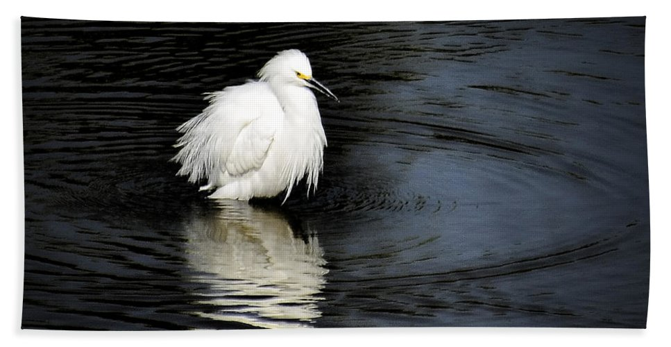 Snowy Egret Bath Sheet featuring the photograph Reflections Of An Egret by Saija Lehtonen
