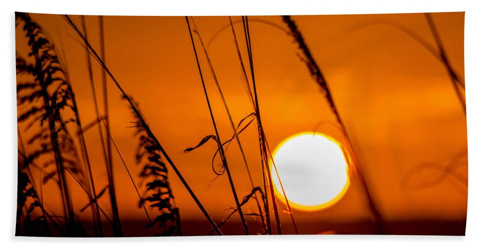 Relaxing Hand Towel featuring the photograph Relaxed by Shannon Harrington