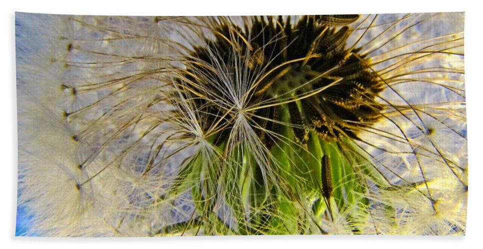 Nature Bath Sheet featuring the photograph Releasing Seeds by Debbie Portwood