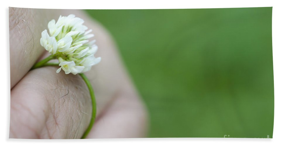 Ring Bath Sheet featuring the photograph Ring Flower by Mats Silvan