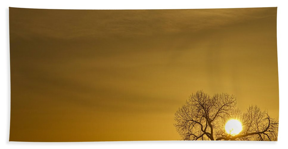 Sunrise Bath Sheet featuring the photograph Rising Sun by James BO Insogna