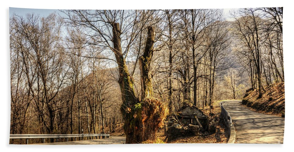 Road Curve Hand Towel featuring the photograph Road Curve With Trees by Mats Silvan