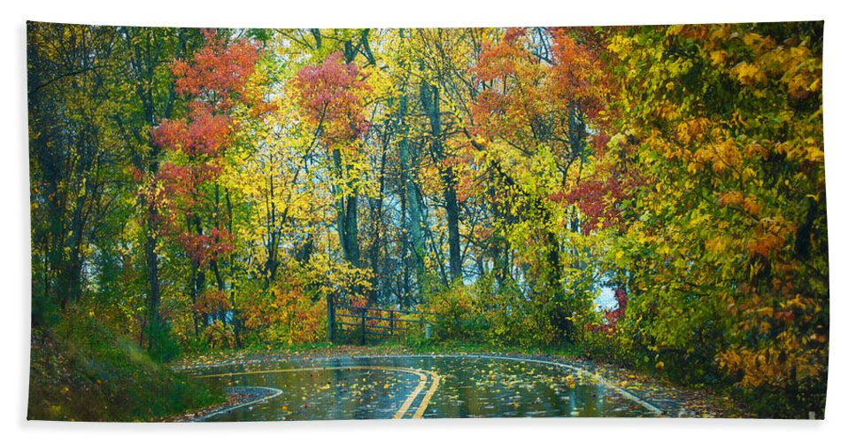 Fall Bath Sheet featuring the photograph Roadway After The Rain by Anne Kitzman
