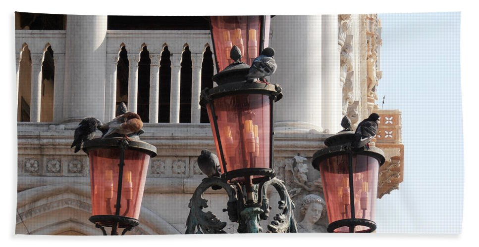 Roman Pigeons Hand Towel featuring the photograph Roman Pigeons by Bill Cannon