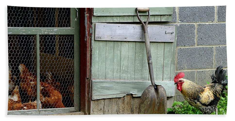 Rooster And Hens Bath Sheet featuring the photograph Rooster And Hens by Lisa Phillips