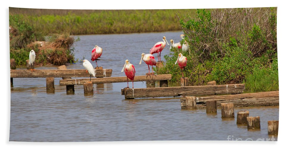 Roseate Spoonbill Hand Towel featuring the photograph Roseate Spoonbills And Snowy Egrets by Louise Heusinkveld
