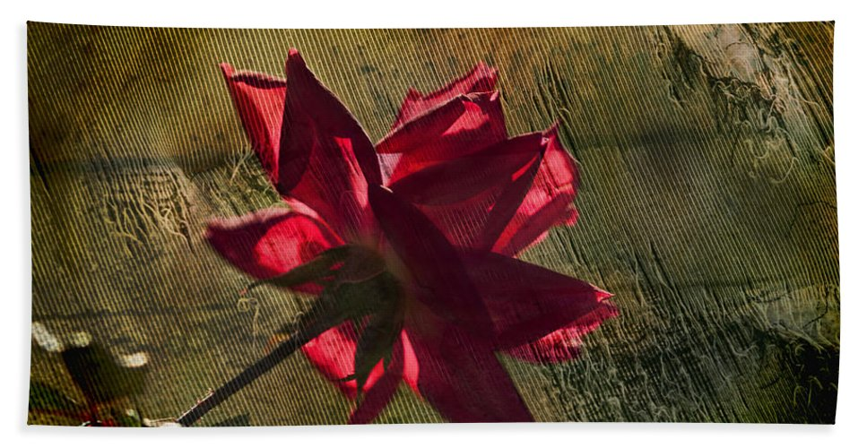 Rose Bath Sheet featuring the photograph Roses Are Red With A Bit Of Grunge by Kathy Clark