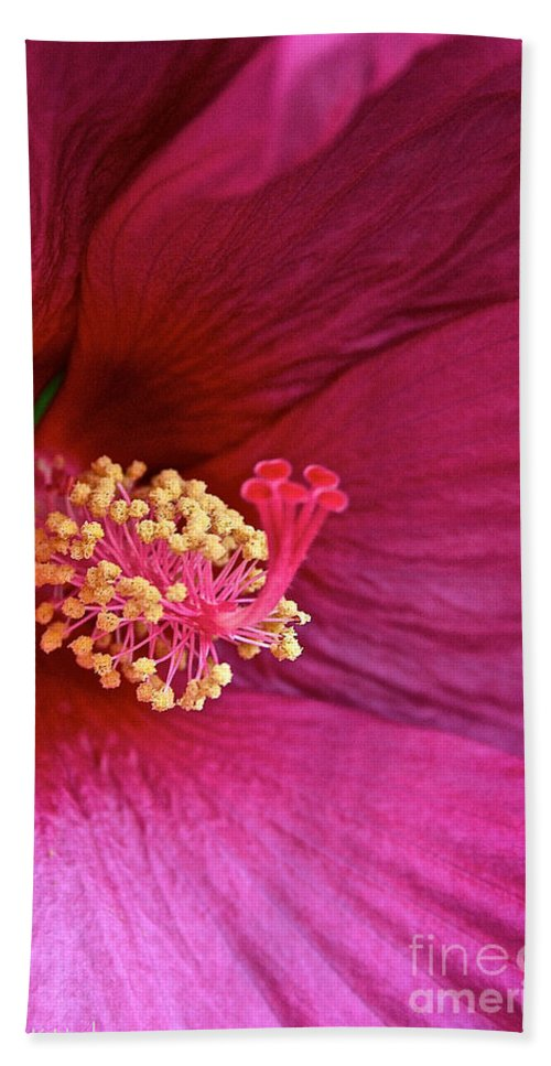 Outdoors Bath Sheet featuring the photograph Ruby Hibiscus by Susan Herber