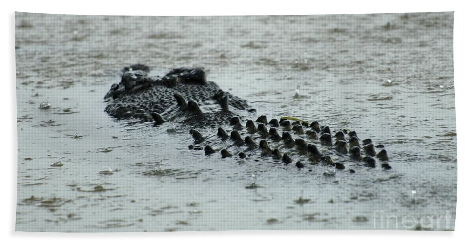 Salt Water Crocodile Bath Sheet featuring the photograph Salt Water Crocodile 3 by Bob Christopher