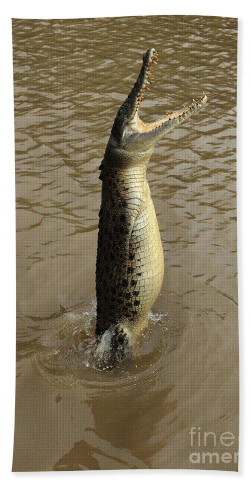 Salt Water Crocodile Bath Sheet featuring the photograph Salt Water Crocodile by Bob Christopher