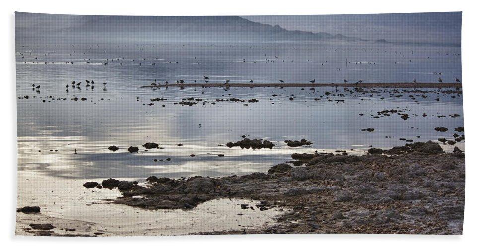Seagulls Bath Sheet featuring the photograph Salton Sea Birds by Linda Dunn