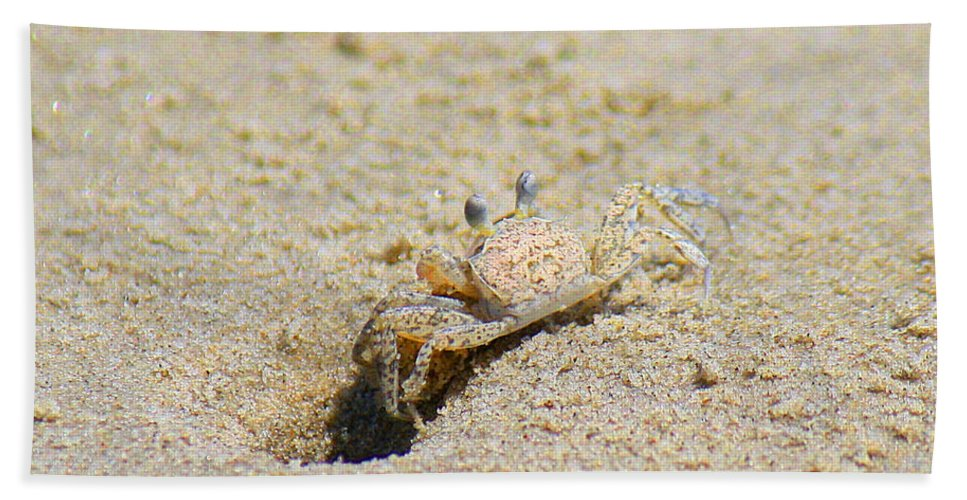 Roena King Hand Towel featuring the photograph Sand Crab Digging His Hole by Roena King