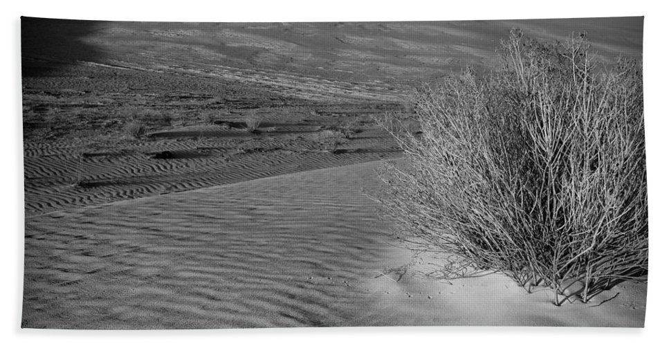 New Mexico Bath Sheet featuring the photograph Sand Shrub 3 by Sean Wray