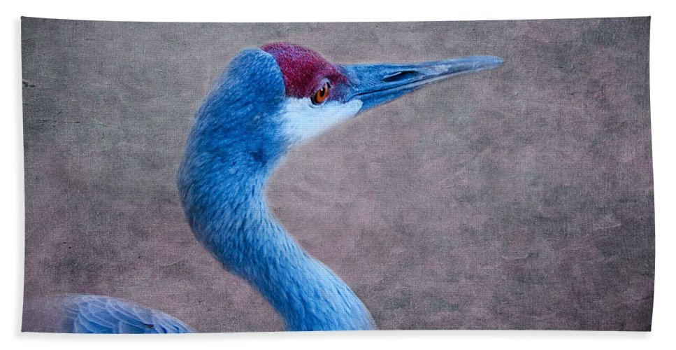 Sandhill Crane Bath Sheet featuring the photograph Sandhill Crane 3 by Betty LaRue