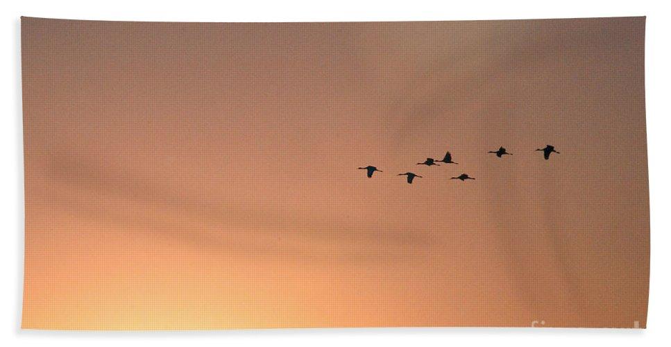 Crane Bath Sheet featuring the photograph Sandhill Cranes To The Sun by David Arment