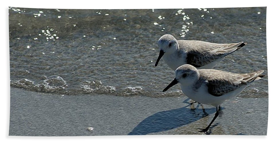 Sandpiper Hand Towel featuring the photograph Sandpiper 5 by Joe Faherty