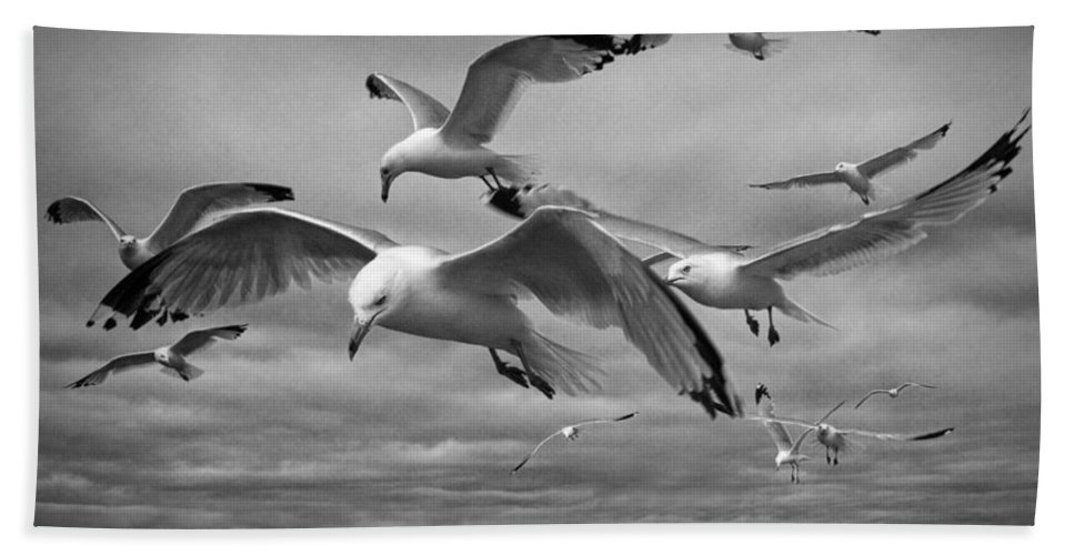 Sea Bath Sheet featuring the photograph Sea Gull Scavengers by Randall Nyhof