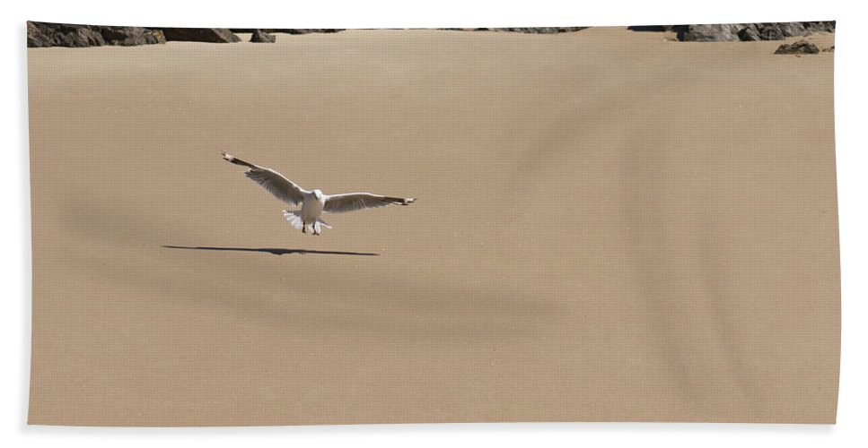 Animals Bath Sheet featuring the photograph Seagull Spreads Its Wings On The Beach by U Schade