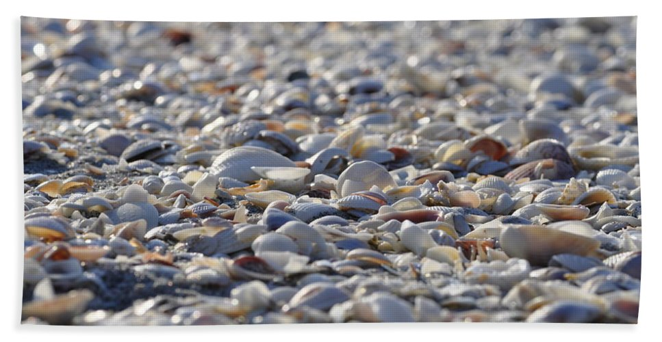 Seashells Hand Towel featuring the photograph Seashells by Joe Freeman