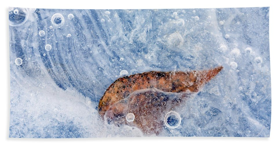 Leaf Hand Towel featuring the photograph Season Past by Mike Dawson