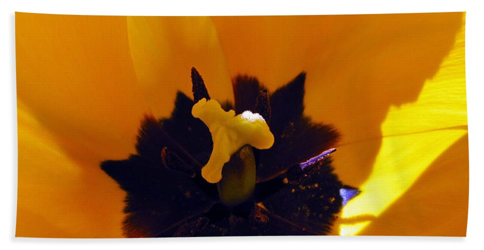 Yellow Bath Sheet featuring the photograph Secret Place by Tikvah's Hope