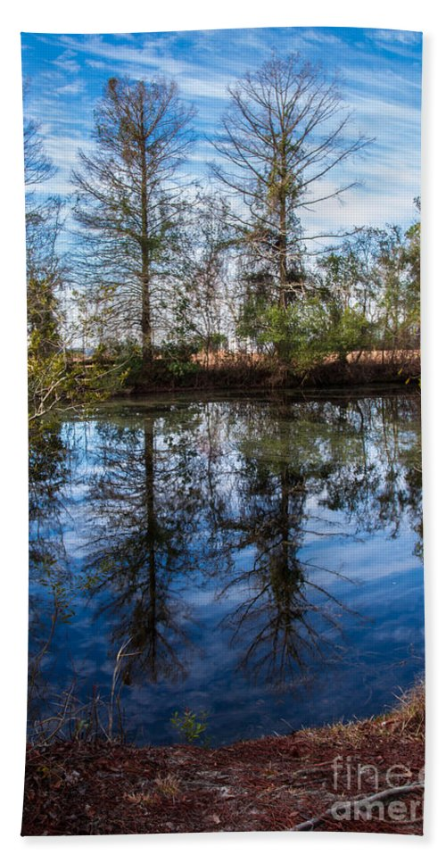 See Hand Towel featuring the photograph Seeing Double by Scott Hervieux