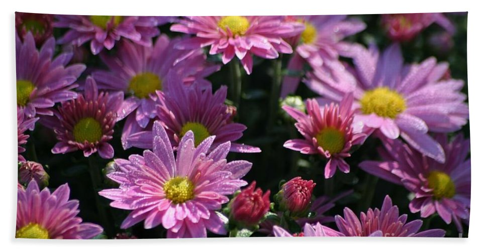 Flowers Bath Sheet featuring the photograph September Morning by Living Color Photography Lorraine Lynch