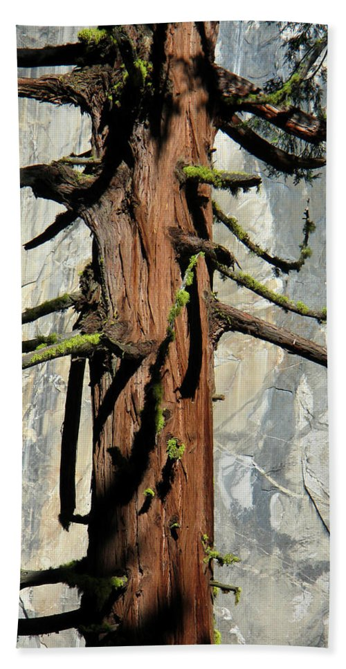 Sequoia Hand Towel featuring the photograph Sequoia And El Capitan by Greg Matchick