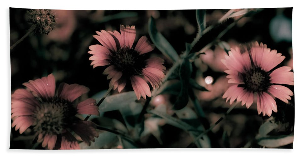 Wildflowers Bath Sheet featuring the photograph Shaded In The Evening by DigiArt Diaries by Vicky B Fuller
