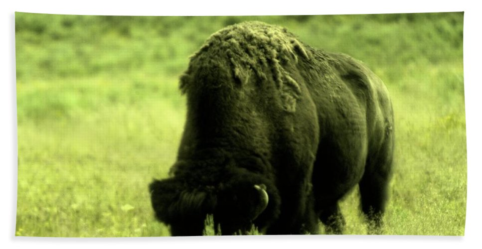 Buffalo Hand Towel featuring the photograph Shedding by Jeff Swan