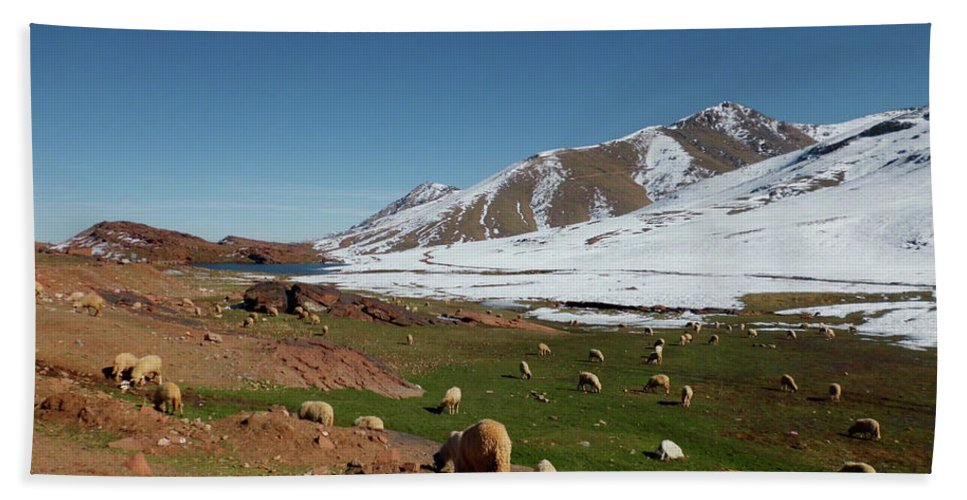 Travel Hand Towel featuring the photograph Sheep In The Atlas Mountains 02 by Miki De Goodaboom