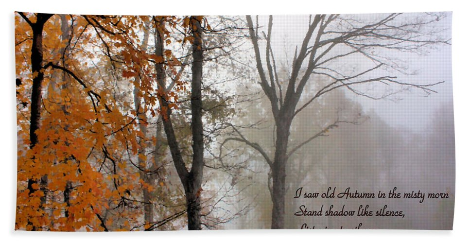 Autumn Bath Sheet featuring the photograph Silence by Kristin Elmquist