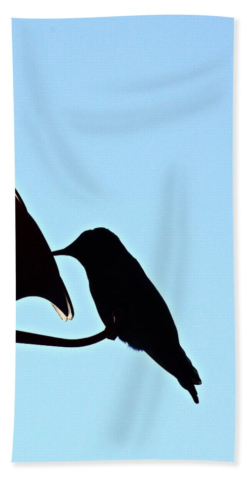Birds Bath Sheet featuring the photograph Silhouette by Diana Hatcher