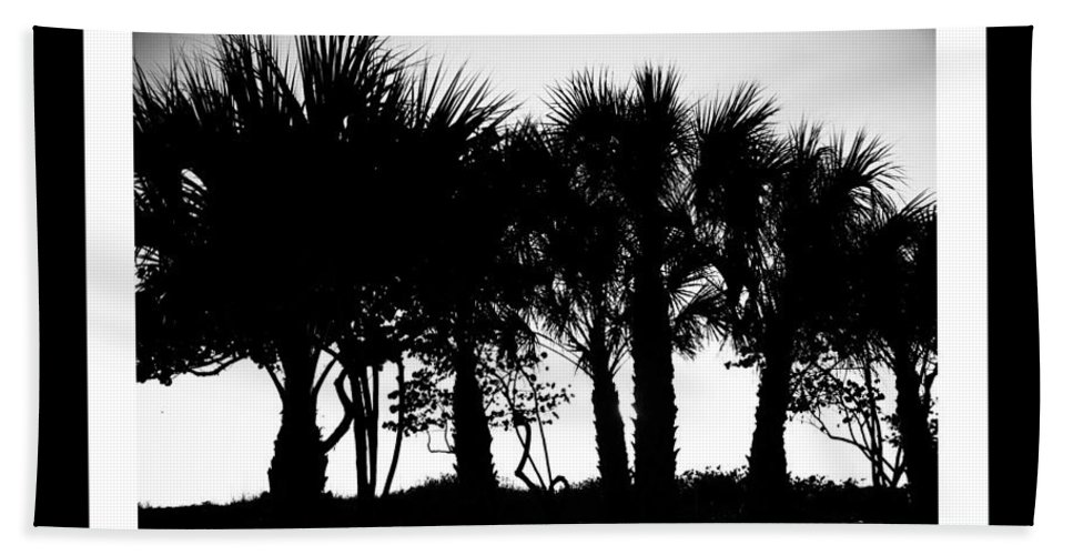 Lido Bath Sheet featuring the photograph Silhouette Palm Sunset by Betsy Knapp