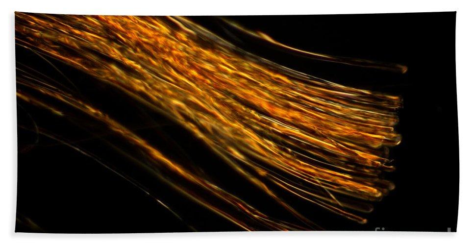 Silk Hand Towel featuring the photograph Silk Fiber by Ted Kinsman