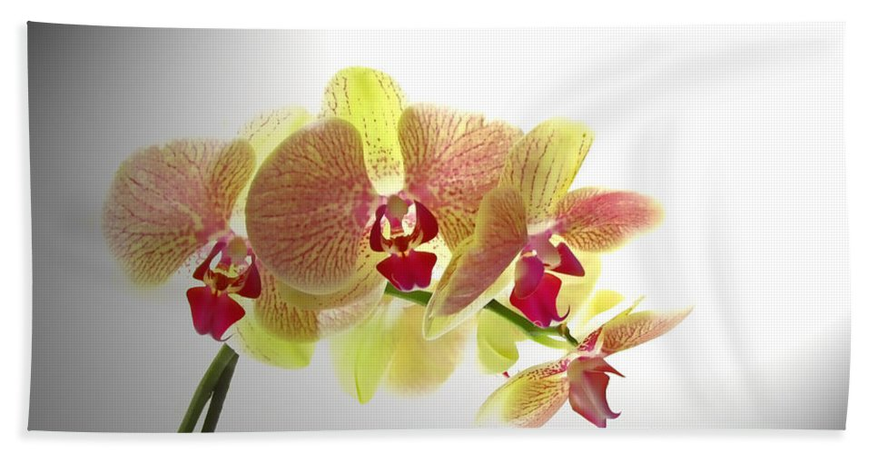 Nature Bath Sheet featuring the photograph Simplified Orchids II by Debbie Portwood
