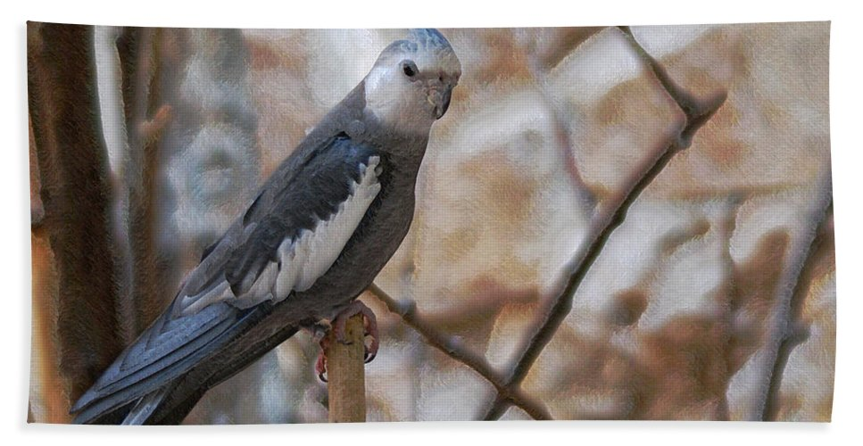 Cockatiels Hand Towel featuring the photograph Sitting Pretty by Ernie Echols