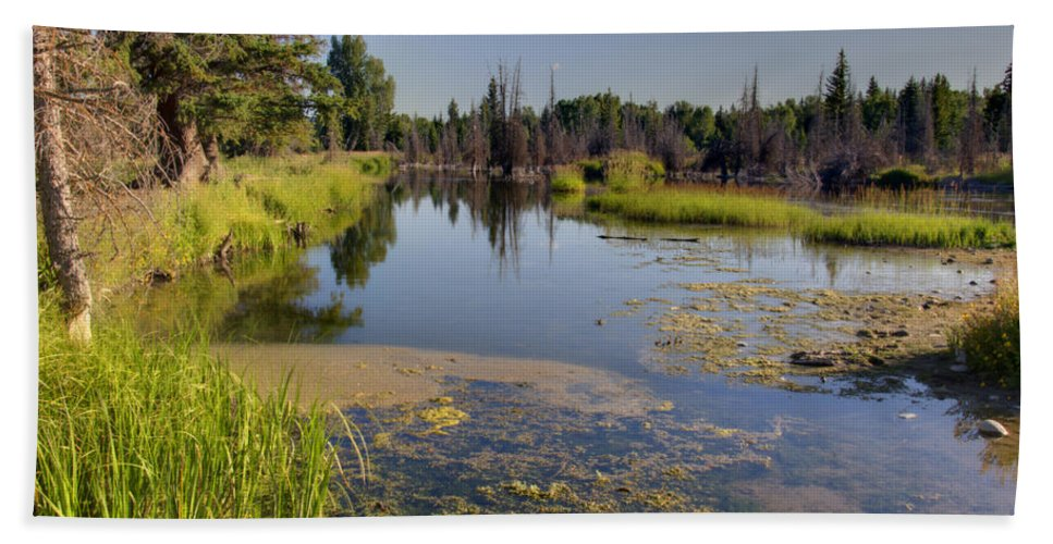 Swampy Snake River Schwabacher Landing Grand Teton National Park Hand Towel featuring the photograph Slow Snake River by Paul Cannon